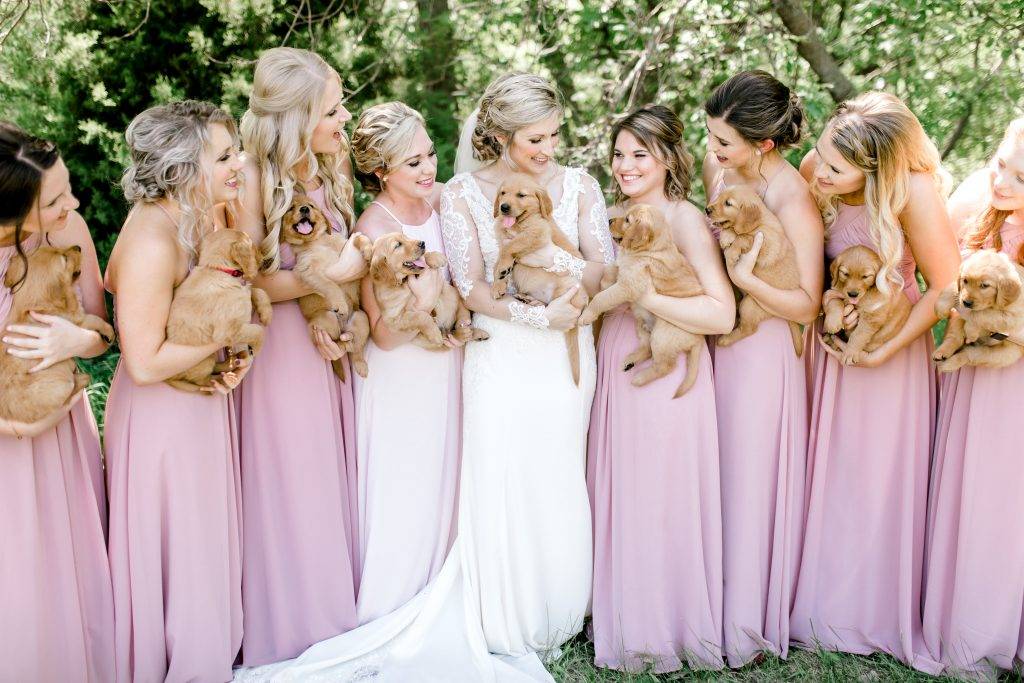 Bridesmaids puppy bouquets - Azazie - Essence of Australia gown - Sam Areman Photo - Golden Retriever puppies